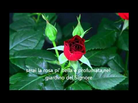 A Teu0027la Mia Rosa Piuu0027 Bella...la Mia Mamma.