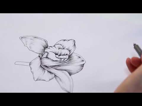 Floral Illustration Textile Design Online Course