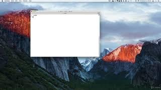 Node.js for Beginners - Become a Node.js Developer + Project : Installing NODE.js in a MAC