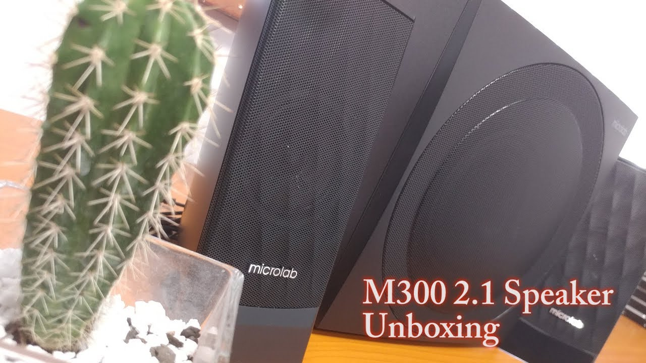 Microlab M300 2.1 multimedia speakers – Unboxing