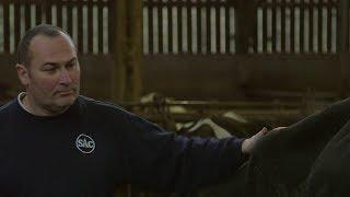 Ils sont les Pays de la Loire : Fabrice Hégron, éleveur, co-fondateur d'une laiterie à Rémouillé