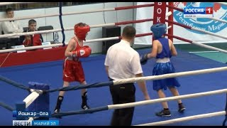 В Йошкар-Оле стартовали соревнования Чемпионата и Первенства республики по боксу