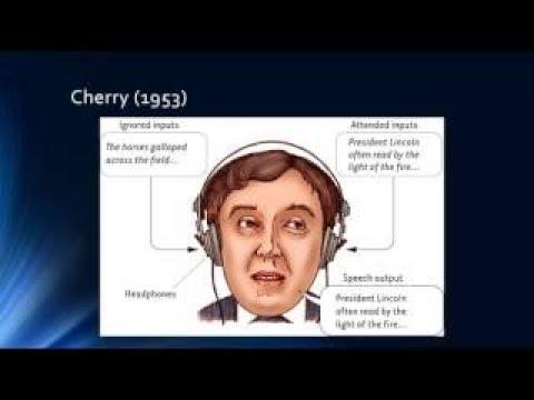 Consciousness - Crash Course Psychology #8