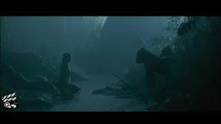 Video THE LEGEND OF TARZAN (2016) SUB INDO | (6/10) | CLIPMOVIE INDO download MP3, 3GP, MP4, WEBM, AVI, FLV Agustus 2019