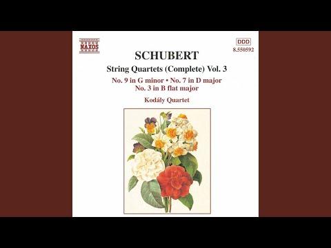 String Quartet No. 3 in B-Flat Major, D. 36: III. Menuetto: Allegro ma non troppo