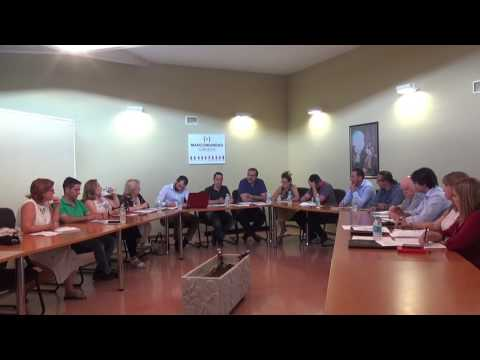 Pleno Mancomunidad Suroeste 29-06-2017
