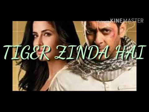 Swag Se Swagat song !! Tiger Zinda Hai !! Salman Khan !! Kaitrina Kaif !!