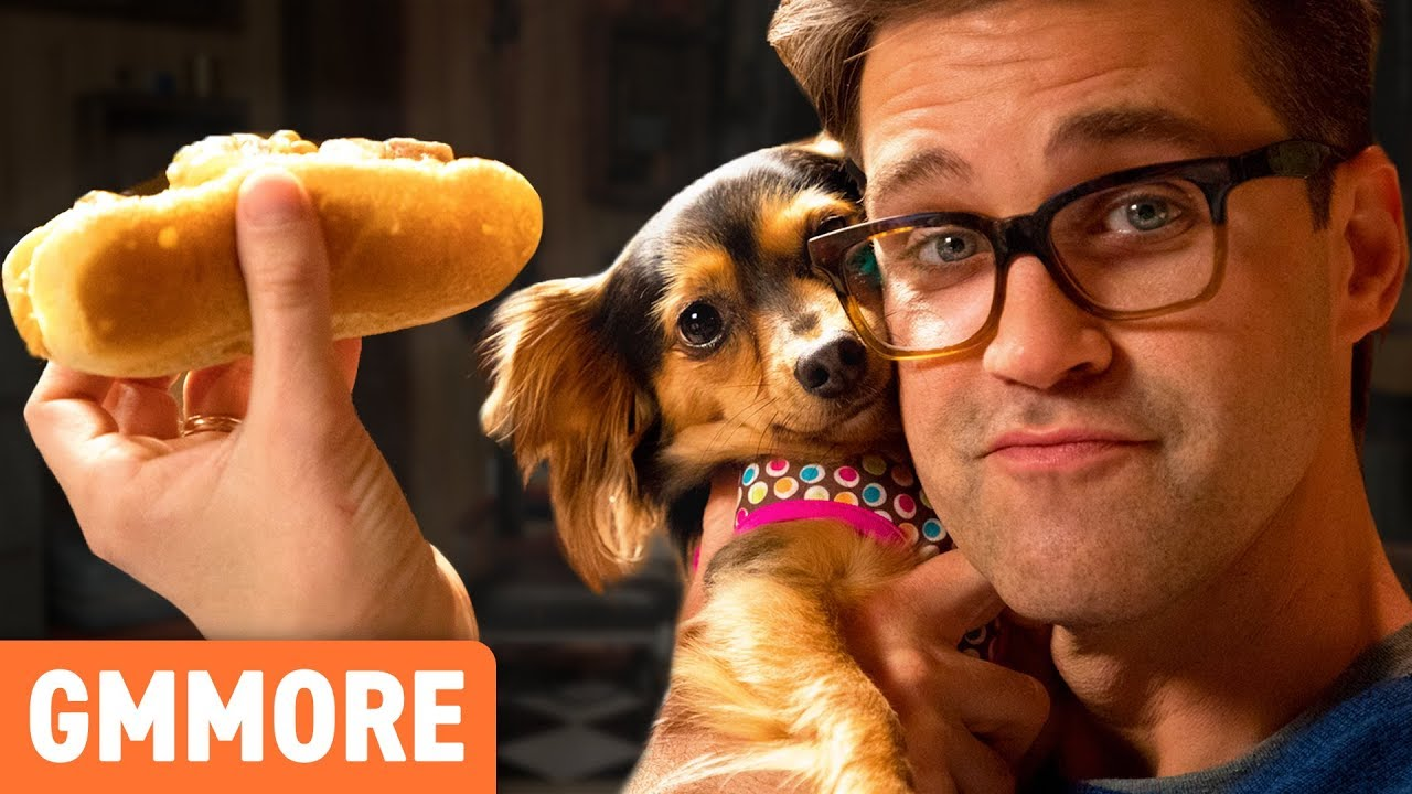 hot-dogs-for-dogs-taste-test
