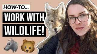 How to Become a Wildlife Biologist (in 5 minutes)