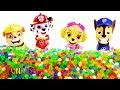Pj Masks & Paw Patrol Surprise Toys, Learn Colors with Balls Beads