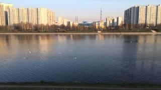 Парк 850-летия Москвы, Марьино. Первые лучики солнца:)(, 2015-04-28T22:47:18.000Z)