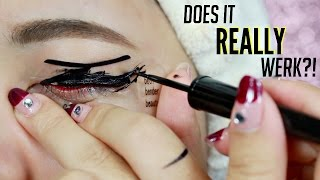 $0.99 EBAY Eyeliner STENCIL Review! Does It REALLY WORK?!