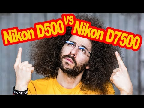 Nikon D500 VS Nikon D7500 Comparison: Which To Buy?