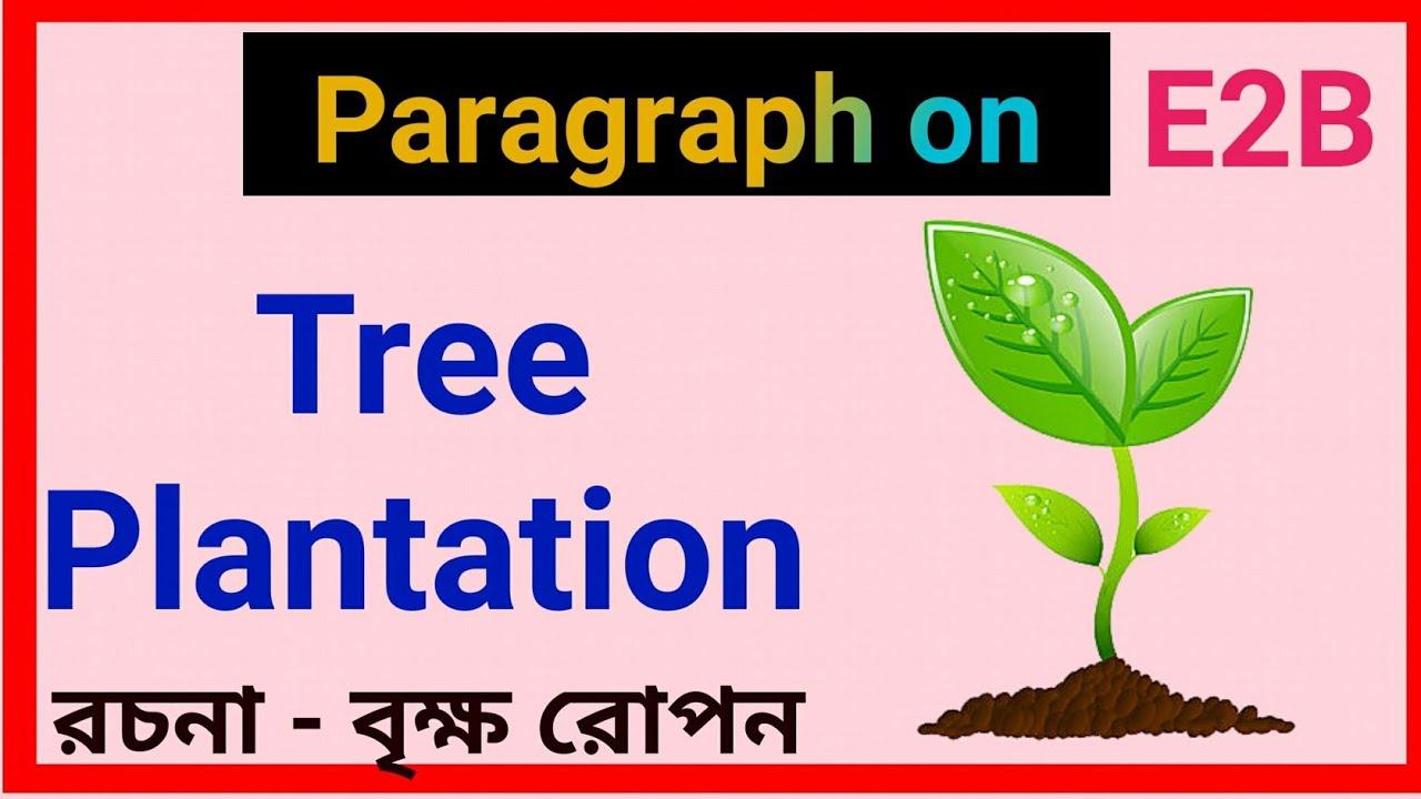 Paragraph on Tree Plantation || essay in Tree Plantation ...