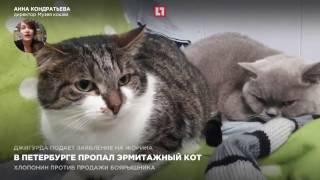В Петербурге пропал эрмитажный кот