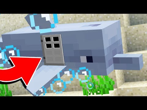 HOW TO LIVE INSIDE A DOLPHIN IN MINECRAFT 1.13!