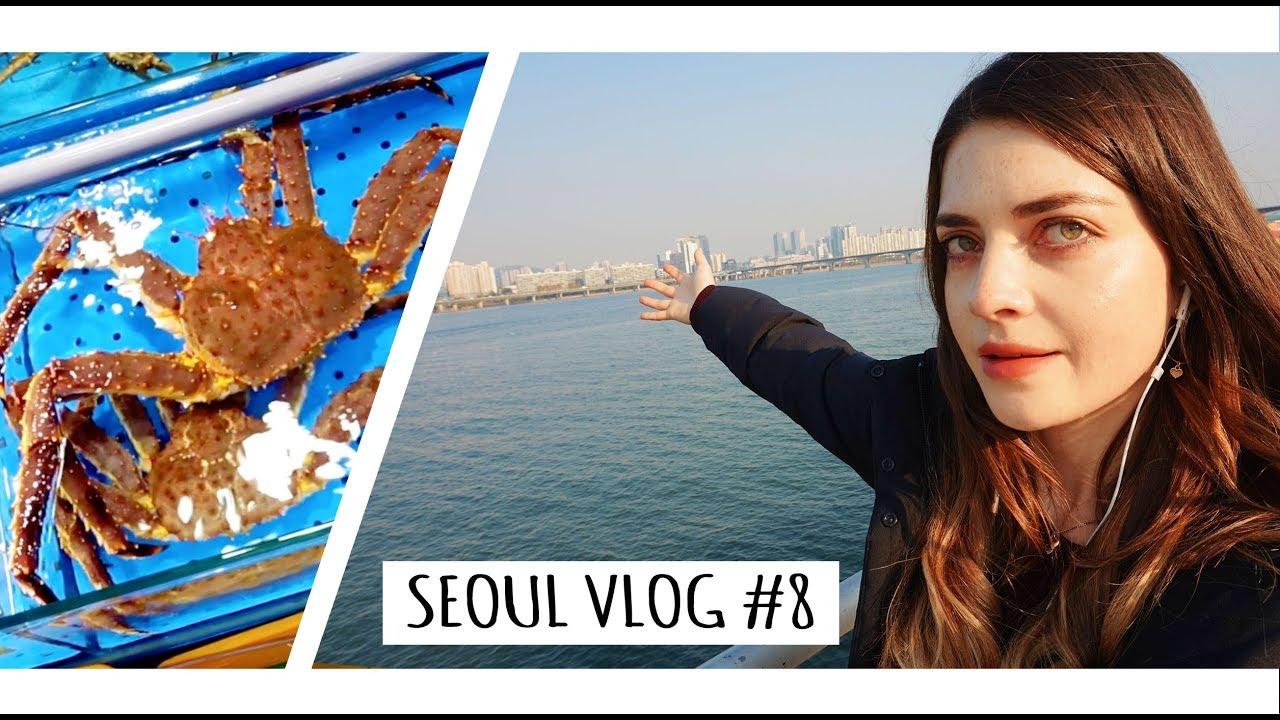 Seoul Vlog #8 (Noryangjin Fish Market/ Han River Walk)- - ♥