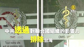 中共影響WHO惡果!美報告:排除台灣 害死29萬人
