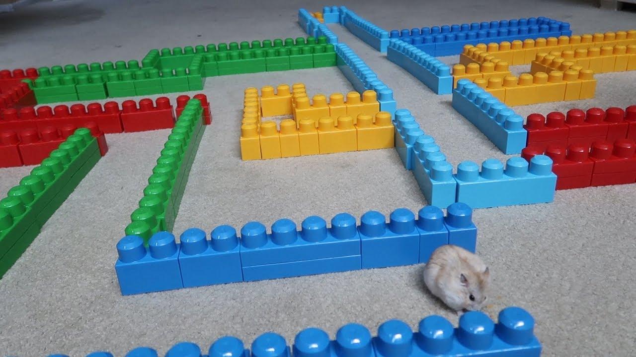 how to make a lego hamster maze