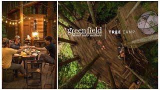green field -TREE CAMP-