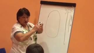 Урок биологии, 9 класс