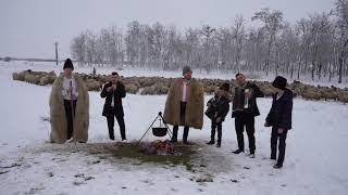 Descarca Tavi de la Oradea - Ei hai ciobanie