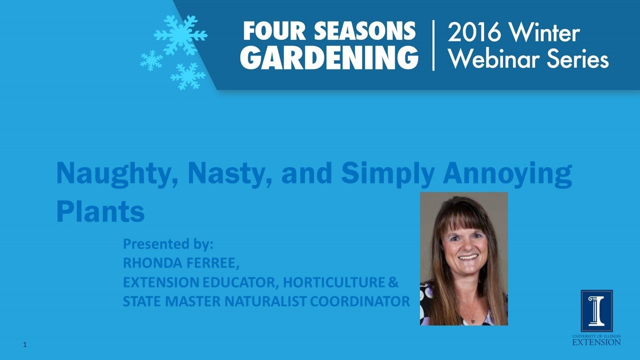 Four Seasons Gardening Series   Naughty, Nasty, And Simply Annoying Plants