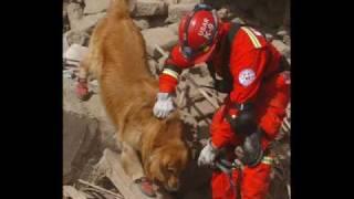 Earthquake Peru 2007 - Terremoto Perú 2007