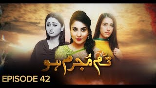 Tum Mujrim Ho Episode 42 BOL Entertainment Feb 12
