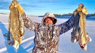Треска как ловить в Якутии
