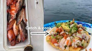 Rockfish Ceviche Catch \u0026 Cook at Santa Rosa Island