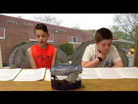 Smith School News Program 6/16/2017