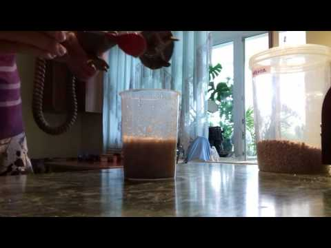 Прикорм с 4 месяцев, с 6 месяцев, гречневая каша для грудничка,как приготовить самостоятельно