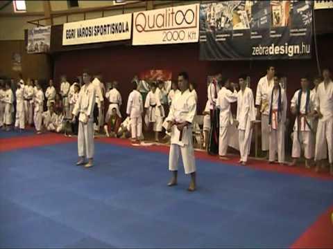 Karate Progresul Cernica Eger Ungaria 2011-5/5
