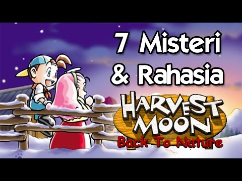 7 Rahasia & Misteri Harvest Moon : Back to Nature yang Mungkin Belum Kamu Ketahui - TAG 7