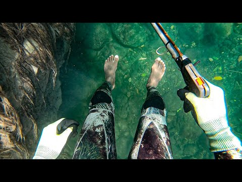 Overnight Camping | Spearfishing For Food