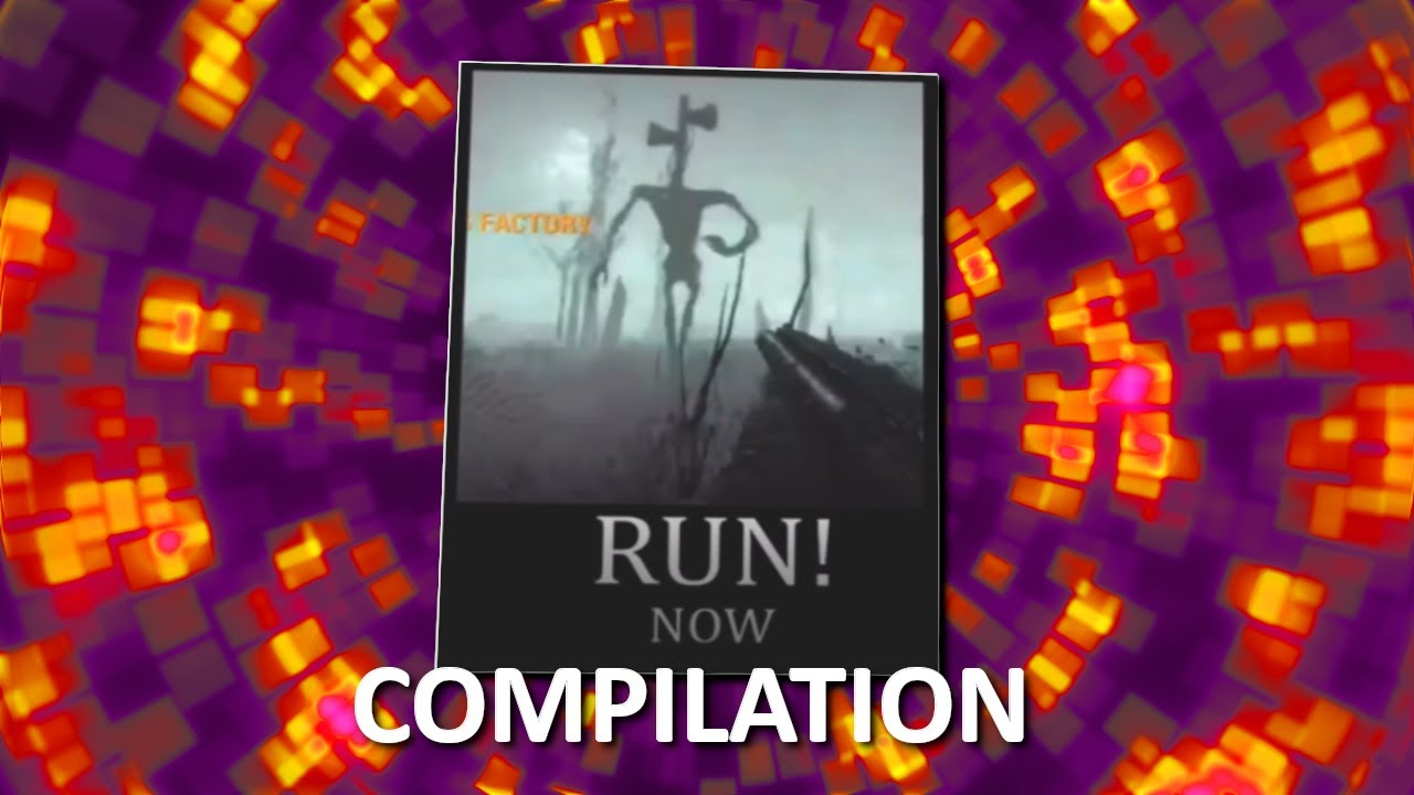 Download Another Compilation Of Sanctuary Guardian Memes
