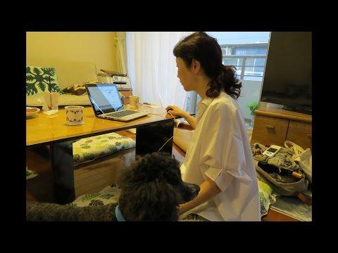 NES System, Pet Wave Therapist Miyuki Oikawa in Tokyo, Japan