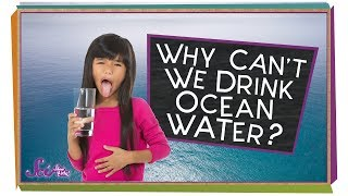 Why Can't We Drink the Ocean?