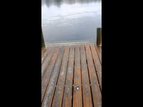 First Cinco Bayou freeze video