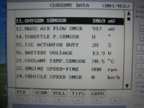 Diagnostic Hyundai Accent X-3 95-99 (Part 1)