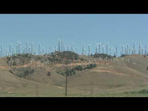 Wind Energy field in California