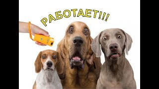 Отпугиватель собак! НЕ ДАЙ СЕБЯ ПОКУСАТЬ.(, 2013-11-29T10:33:13.000Z)