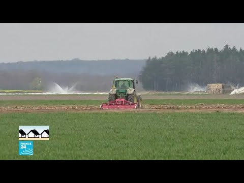 حل لسد النقص في اليد العاملة عند المزارعين في إحدى المناطق الفرنسية.. هل ينجح؟  - نشر قبل 23 ساعة