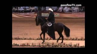PASOFINOTV.COM - MELAO DE CAñA, PASO FINO FERIA NACIONAL EQUINA 2010