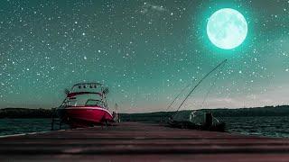 Quiet Night - Deep Sleep Music with Peaceful MoonLight - Fall Asleep with Piano Music
