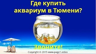 Купить аквариум Тюмень(Купить аквариум Оренбург - Где купить аквариум в Тюмени? Если вы ищете, где купить аквариум в Тюмени, обратит..., 2015-09-01T14:16:59.000Z)