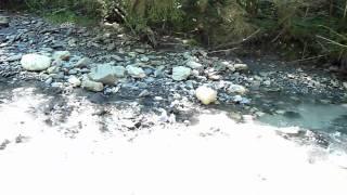 Le ruisseau de mon enfance de Salvatore Adamo