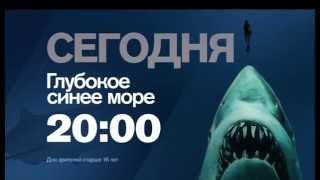 """""""Глубокое синее море"""" сегодня в 20:00 на РЕН ТВ"""