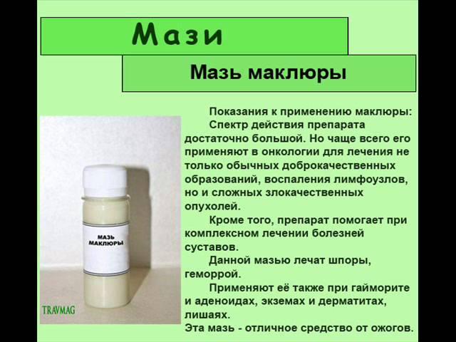 маклюра лечебные свойства рецепты